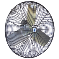 "30"" Hazardous Location Circulation fan with black coated steel guard"